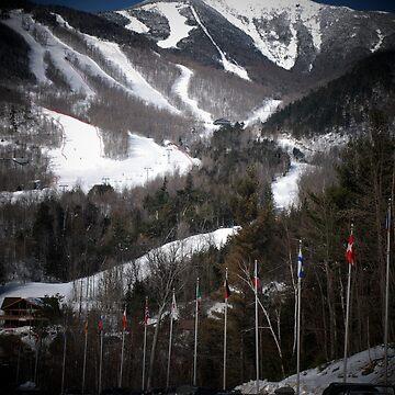 Whiteface Mountain Ski Area by woodeye518
