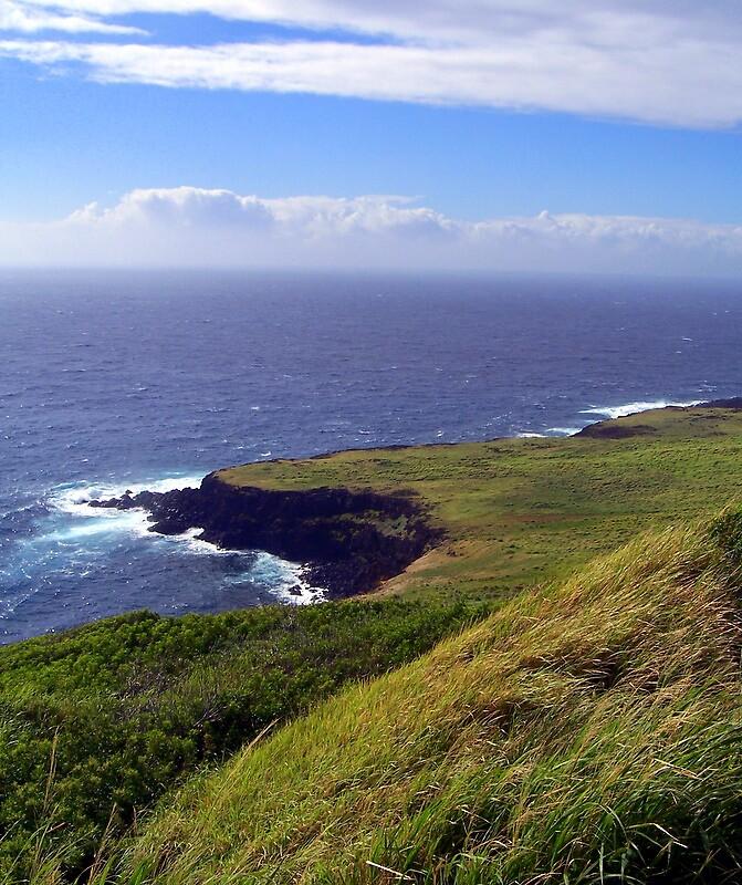 Hawaiian coastline by Joci Solano