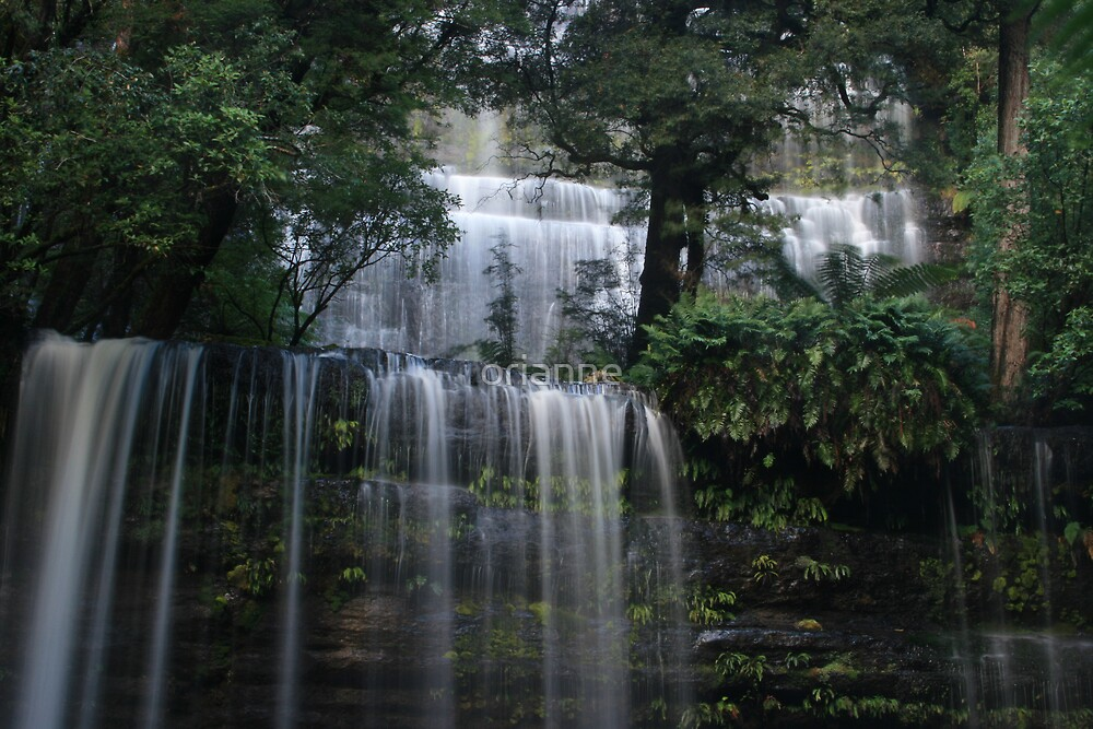 Russell Falls by orianne