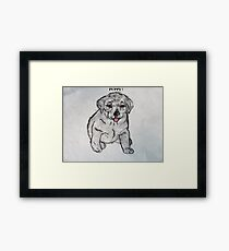 Puppy, Lab, Dog, Animal Framed Print