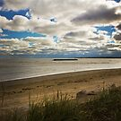 Lake Erie at East Harbor by Shawna Rowe