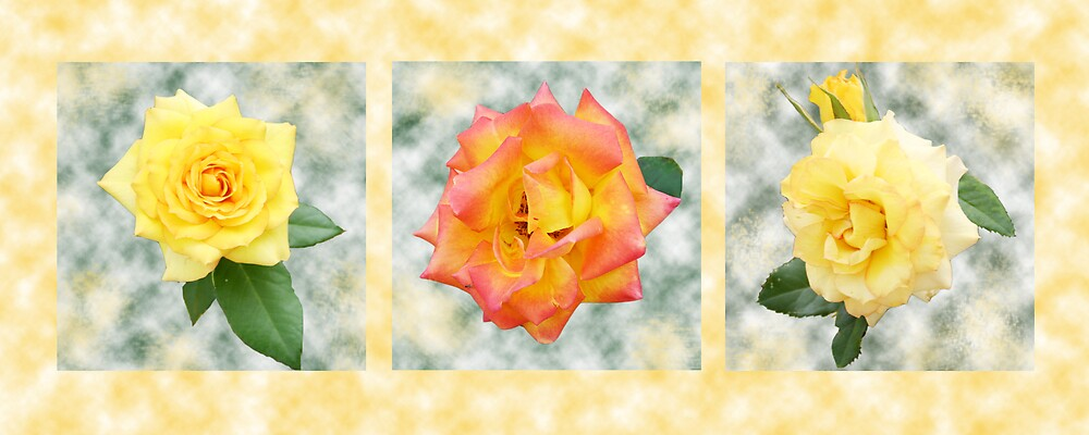 Rose gold by Hazelk