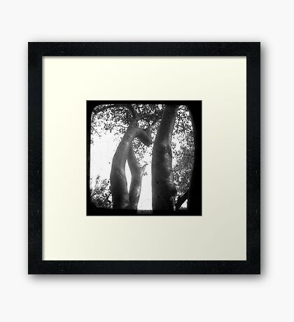 Trunks Framed Print