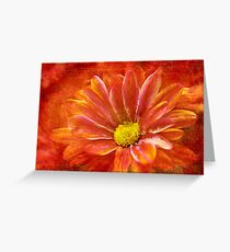 Red, Deep, Abstract Daisy Greeting Card