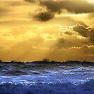 Oregon Coast Sunset  by Tina Bentley