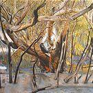Death of a Gum Tree by Michelle Ripari