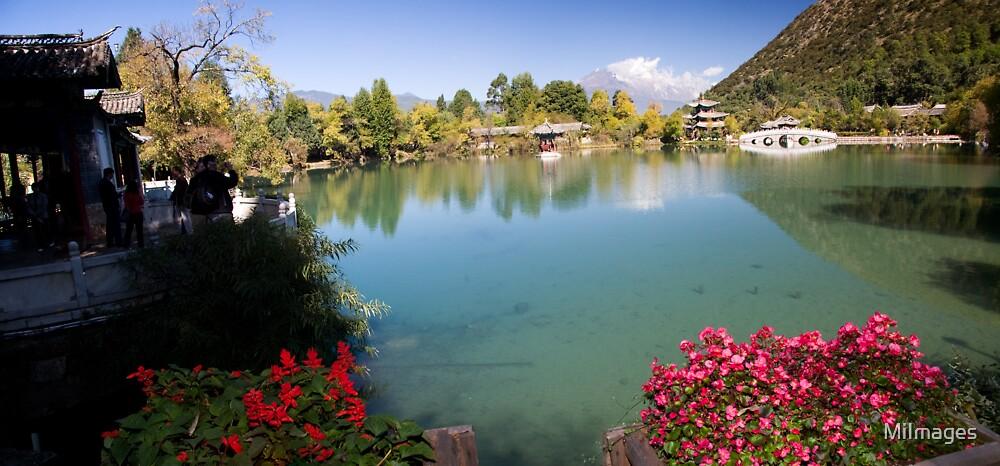 Black Dragon Pool Lijiang Yunan Province China by MiImages