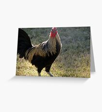 Are You Talking To Me? Greeting Card