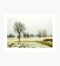 Winter bareness Art Print