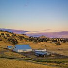 USA. California. Farm. Sunset. by vadim19