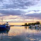 First Light at Bermagui, NSW by Christine Smith