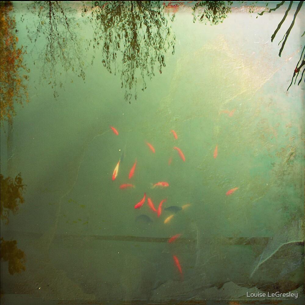 _ goldfish _ by Louise LeGresley