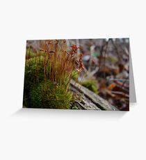 One Inch Giants Greeting Card