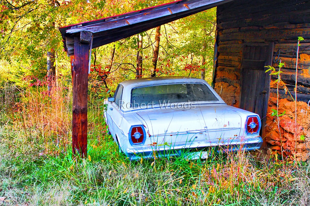 Old Ford by Robert Woods