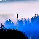 Misty Mountain Hop by John Poon