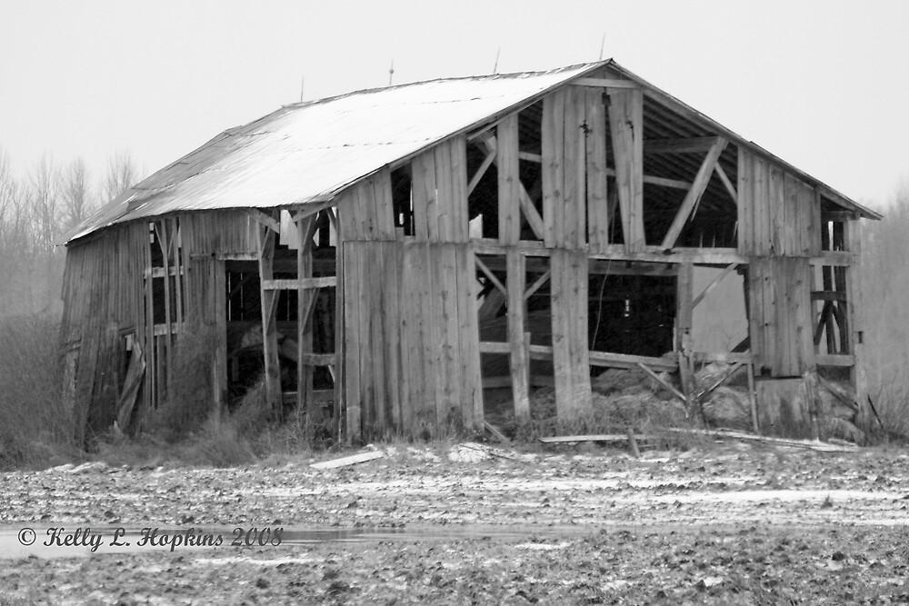 Barn by Kelly Hopkins