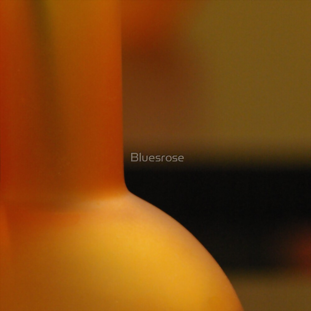 Vase by Bluesrose