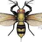 Poison Bee by Djjacksonart