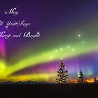 Be Merry and Bright – Denali Aurora Dawn by Owed To Nature
