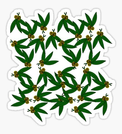 Golden Wattle Sticker