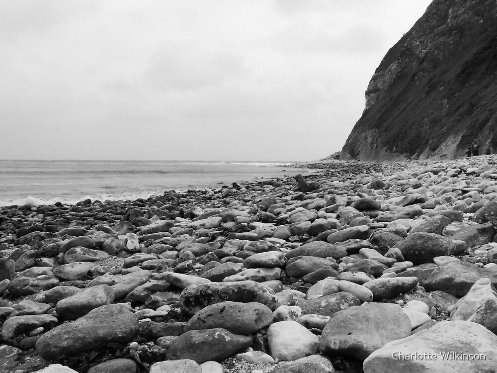 rocky beach by Charlotte Wilkinson