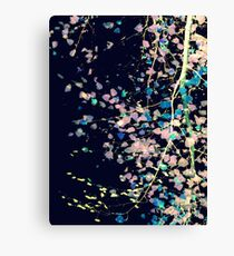 Nature Pattern # 4 - Birch (Blue) Canvas Print