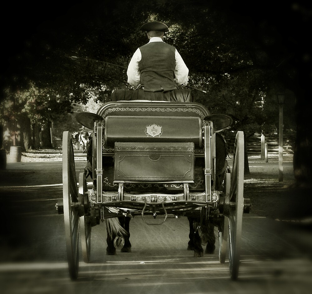 Horse & Carriage by Marc Payne Photography