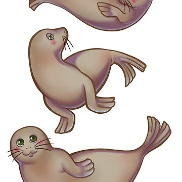 Seal Trio by Ravica