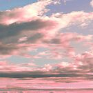 Delicate Sky by cafelab