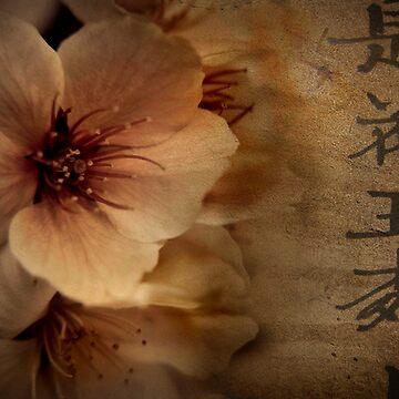Asian Blossom by skeeter
