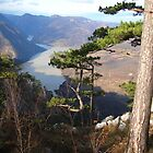 View of the river Drina by Ana Belaj