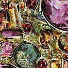 Treasures by Seth  Weaver