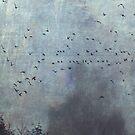 Tree Silhouettes and Birds on a misty day - Fantasmas by Dirk Wuestenhagen