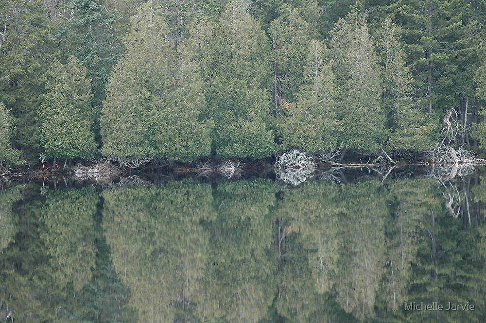 Reflections by Michelle Jarvie