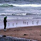 Walking The Beach by Tina Bentley