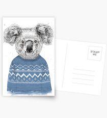 Winter koala Postcards