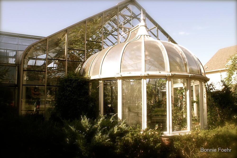 Antique greenhouse by Bonnie Foehr
