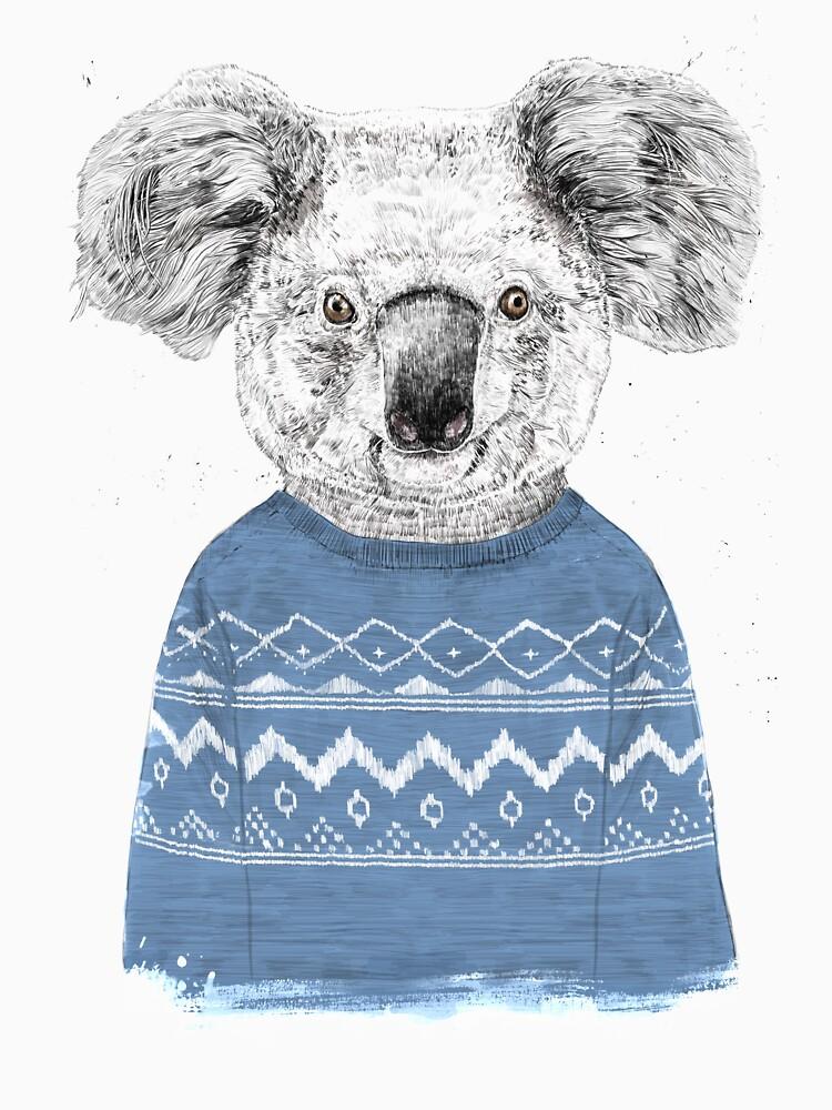 Winter koala by soltib