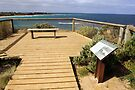 Rocky Point Lookout at Torquay by Darren Stones