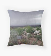 Storm in the Great Basin Desert Throw Pillow