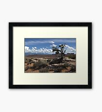 Arches National Park, USA Framed Print