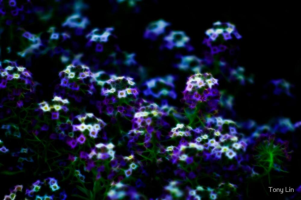 Flouro Spring Flowers by Tony Lin