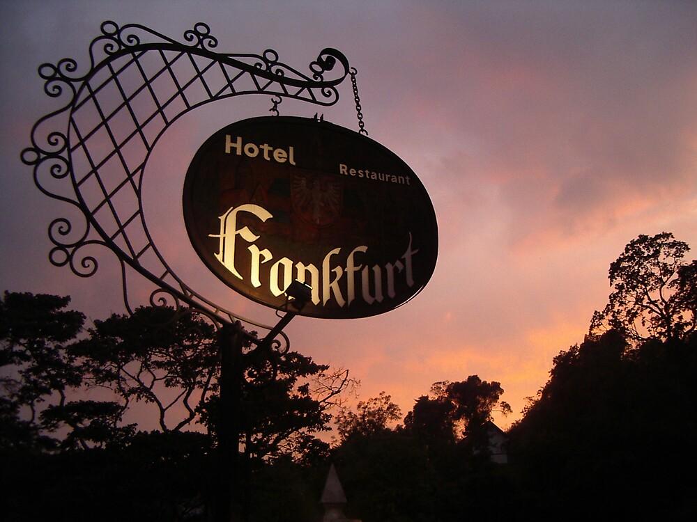 Hotel Frankfurt by Glenn Browning