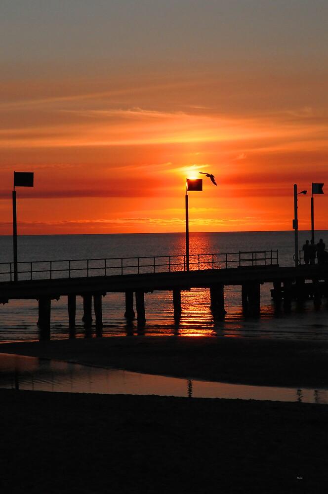 Sunset Frankston by Melle