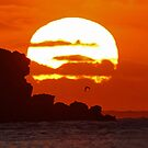 Sunset and Surf Kalbarri Western Australia by Colin  Williams Photography