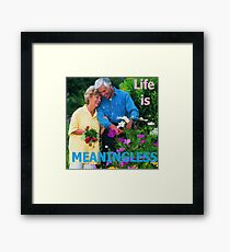 Life Is Meaningless Framed Print