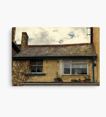 Does Anybody Care? Canvas Print