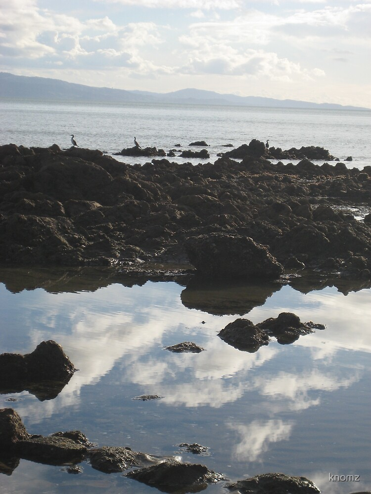 Reflections in the rockpools of Coromandel by knomz