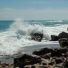 Wave Stop by Donna Adamski