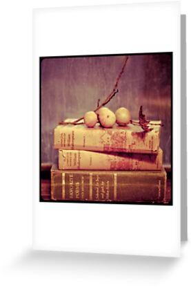 Light Reading by Tia Allor-Bailey